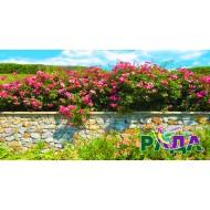 """Фотосетка для декора забора """"Каменный забор с цветами"""""""